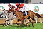 Sama Bu Dhabi by Darike wins the feature race of the day. (20.12.2009)