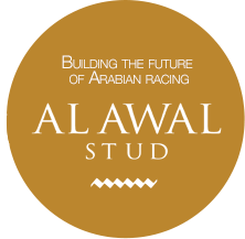 Be a winner with Alawal Stud